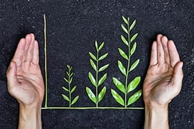 featured_hands_leaves_growth